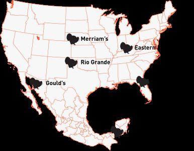 Mark Peterson's World Turkey Slam map